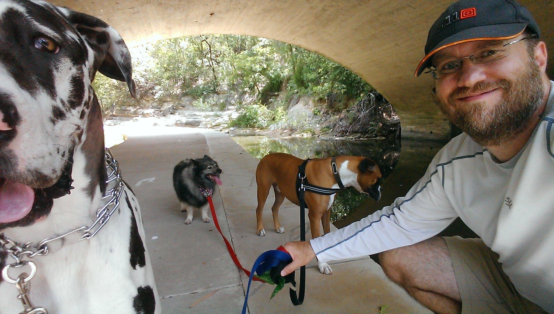 Dallas Dog Walking Turtle Creek